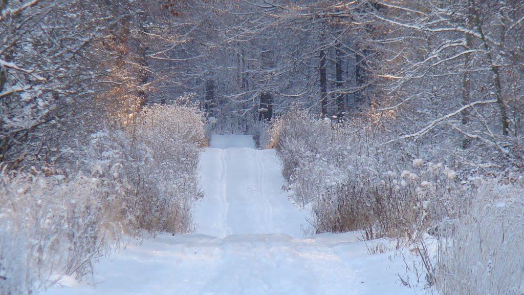 deister-winter
